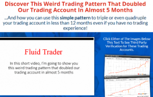 Fluid Trader review