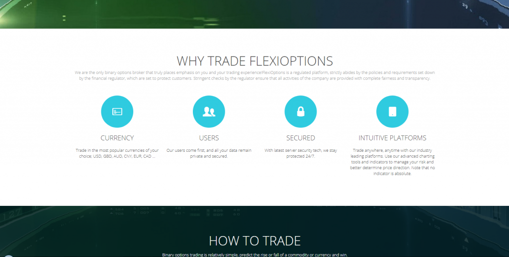 FlexiOptions Review