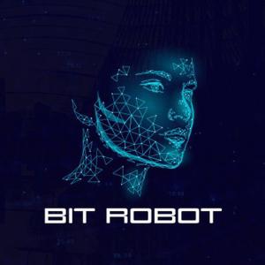 Bit Roboter